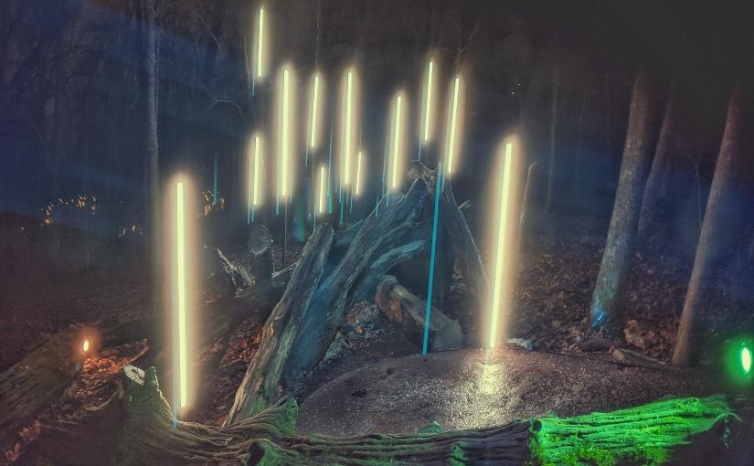 Enchanting Night Exploring the North Forest Lights inArkansas